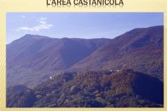 Presentazione _Castagna Roscetta_ copia.003
