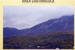 Presentazione _Castagna Roscetta_ copia.004