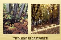 Presentazione _Castagna Roscetta_ copia.006