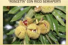 Presentazione _Castagna Roscetta_ copia.007