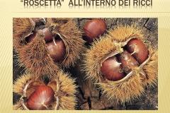 Presentazione _Castagna Roscetta_ copia.008