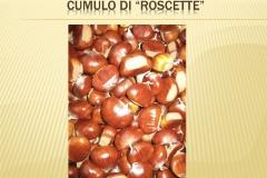 Presentazione _Castagna Roscetta_ copia.009