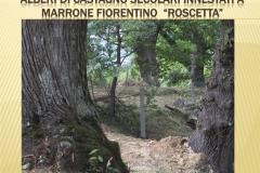 Presentazione _Castagna Roscetta_ copia.010