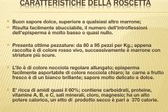 Presentazione _Castagna Roscetta_ copia.013