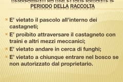 Presentazione _Castagna Roscetta_ copia.023