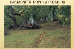 Presentazione _Castagna Roscetta_ copia.026